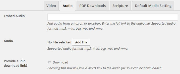 add-audio